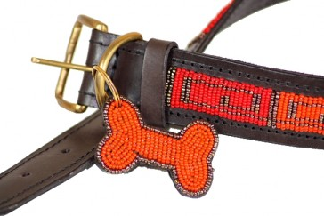 Rot-Orange Halsband für Hunde