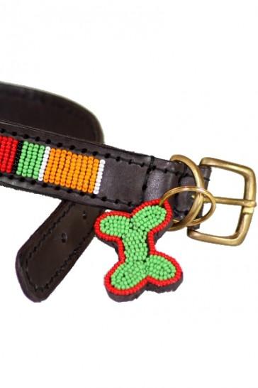 Farbenfrohes Hundehalsband
